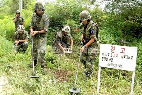 バ韓国軍による地雷探知作業