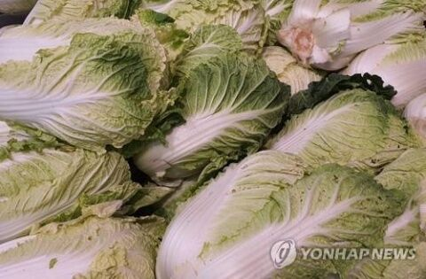バ韓国産の農産物は糞尿まみれ