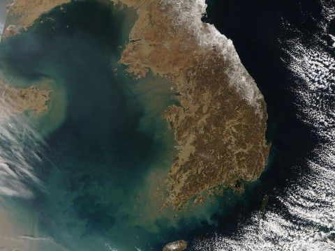バ韓国周辺の海域は糞尿まみれ