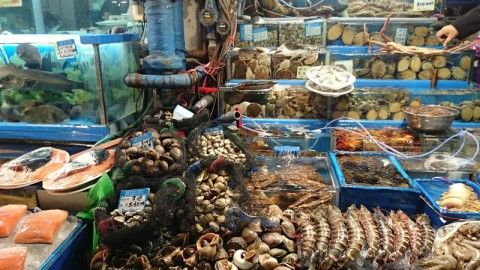 バ韓国の海産物は汚物まみれ
