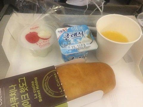 バ韓国アシアナ航空の機内食は動物のエサレベル
