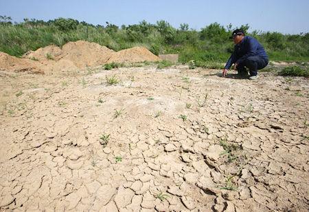 大干ばつで南北朝鮮同時崩壊の可能性高まる!