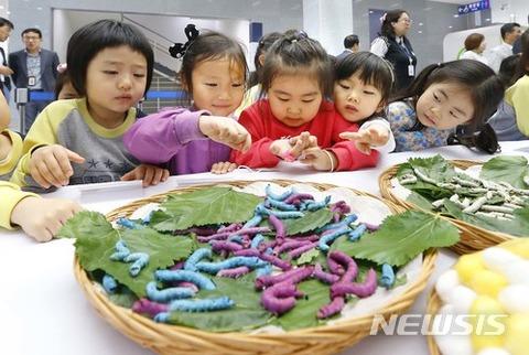 バ韓国塵の醜さは生まれつき