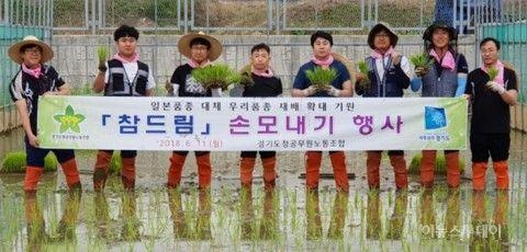 米すらまともに作れないバ韓国塵ども