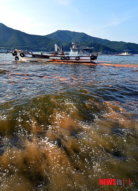 糞尿とキムチ臭い韓国の海