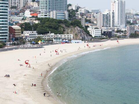 バ韓国のビーチは汚物まみれ