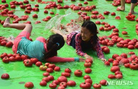 食べ物を粗末にしるバ韓国塵