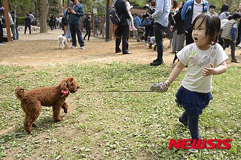 動物虐待に喜びを感じるバ韓国塵ども