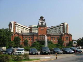 馬鹿の学び舎、ソウル大学
