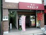 喫茶フラミンゴ 店舗