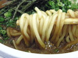ぶっかけ中華 + カレー 麺のアップ