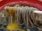 プレミア濃厚鶏白湯つけそば・石臼挽き麺 麺のアップ