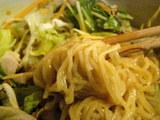 『大地の味噌』〜冷製サラダ風混ぜ麺〜 麺のアップ