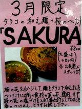 SAKURA 告知