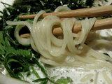 冷やし軍鶏白湯麺 〜梅風味〜 麺のアップ