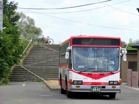 CIMG1259
