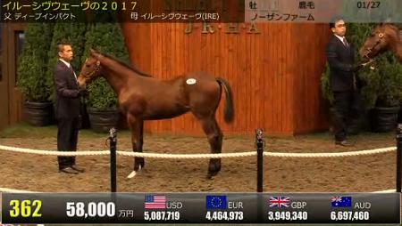 【5億8000万円】アドマイヤカストル現時点での馬体重420キロ台