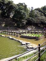 甘木公園 H190417