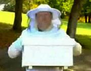 ミツバチドッキリ企画