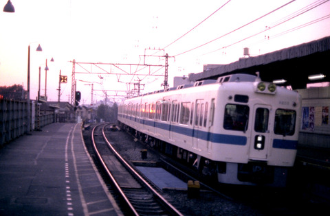 81w02 (1)