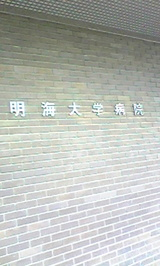019b1a37.jpg