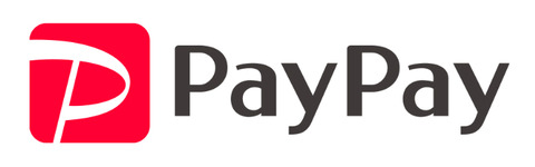 20191113paypayロゴ