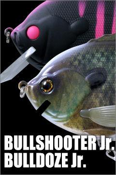 20190220bullshooterjr