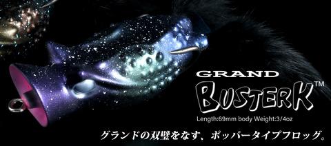 20200403g-bustark