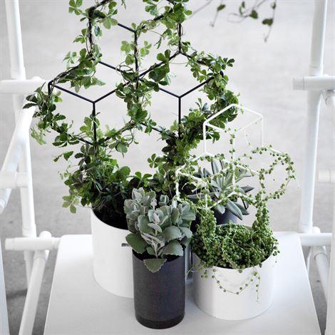 POV planter trellis