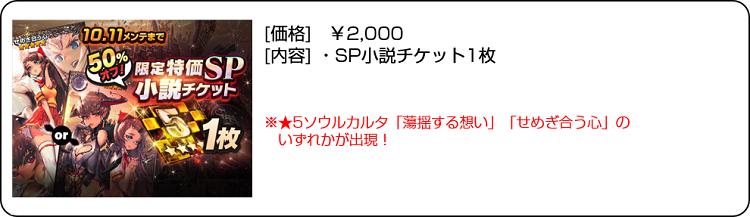 限定特価SP小説チケット