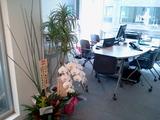 市ヶ谷新オフィス