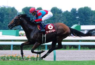 2010札幌記念