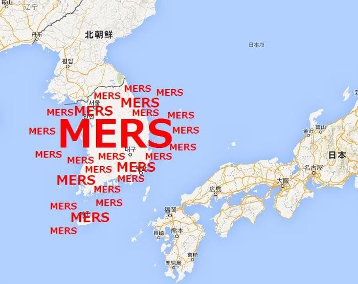 MERS - コピー (3)