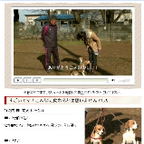 犬のしつけ藤井04