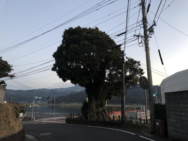 2018_03_02_IMG_0308