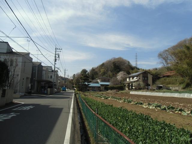 田CIMG1082