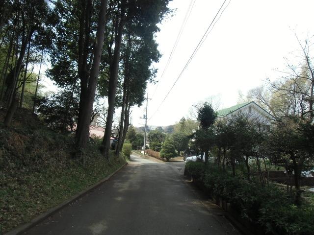 滝CIMG0982