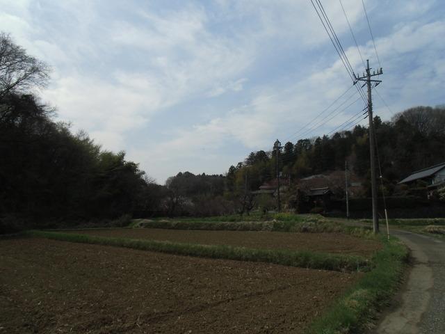 西山CIMG1046