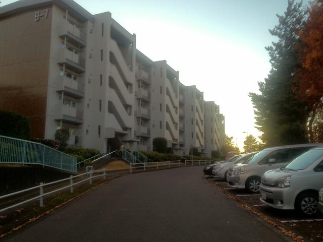 日暮IMG_4543