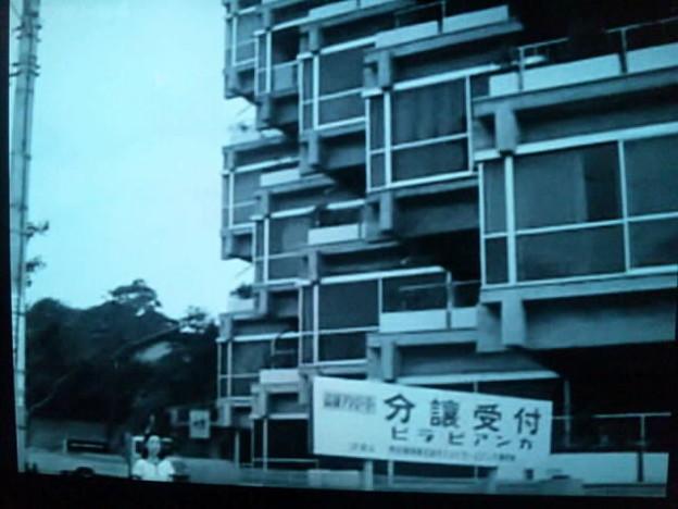 今井健二の画像 p1_32