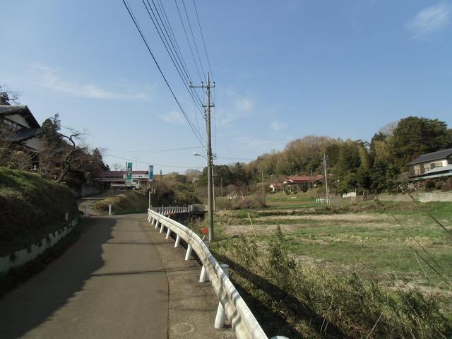 野CIMG1106