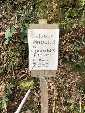 2018_03_07_IMG_1206