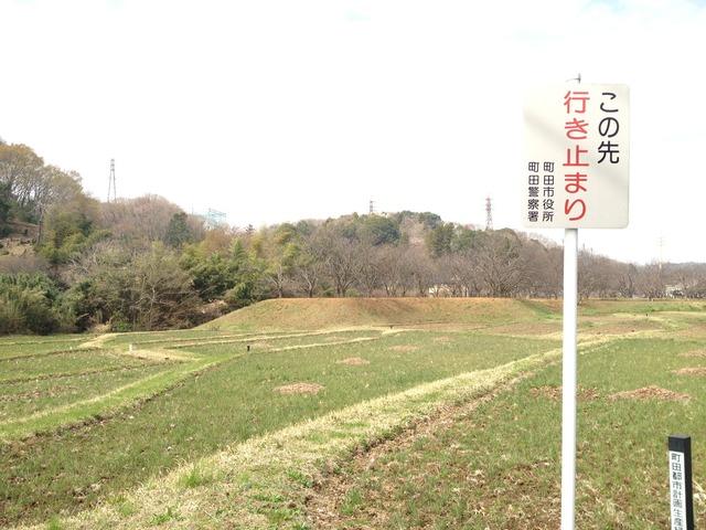松IMG_7812