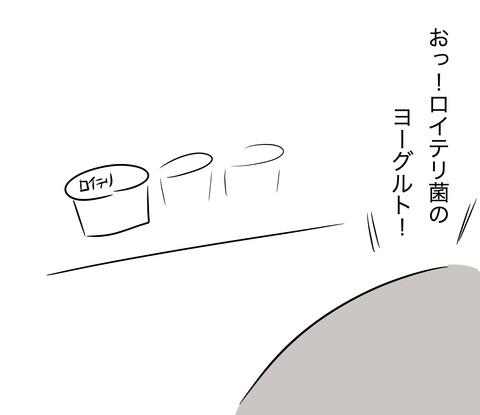ロイテリ1