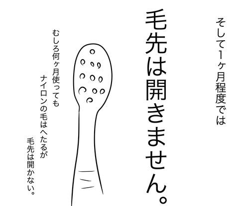 歯ブラシの買い替え3