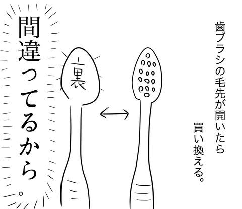 歯ブラシの買い替え1