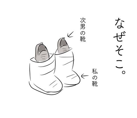 靴の収納4
