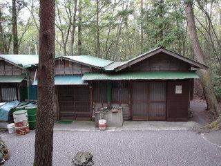 富士の樹海 坊主