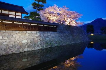 IMGP5788松代城の桜2017-4-19