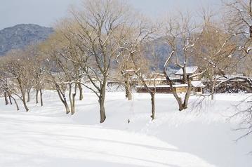 IMGP0691雪の海津城跡